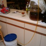 Siphoning the finished beer into the bottling bucket